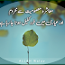 20+ All Time Best Urdu Aqwal Zareen Wallpapers for Facebook