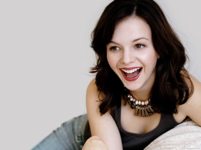 Gorgeous Amber Tamblyn Wallpaper-1600x1200-03