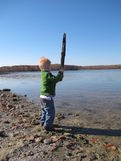 Porter Finds a Big Stick to Throw into the Lake
