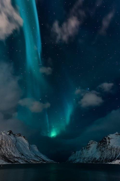 Aurora-Borealis-Ersfjordbotn-Norway