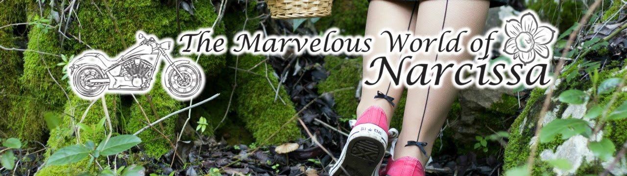 The Marvelous World of Narcissa