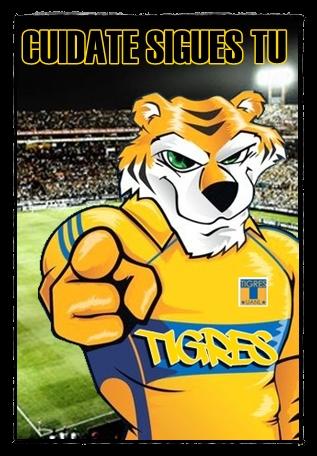 Hoy todos somos Tigres