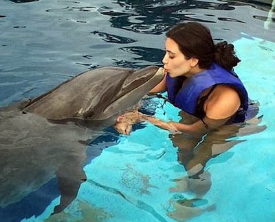 Kim Kardashian kisses dolphin animal love