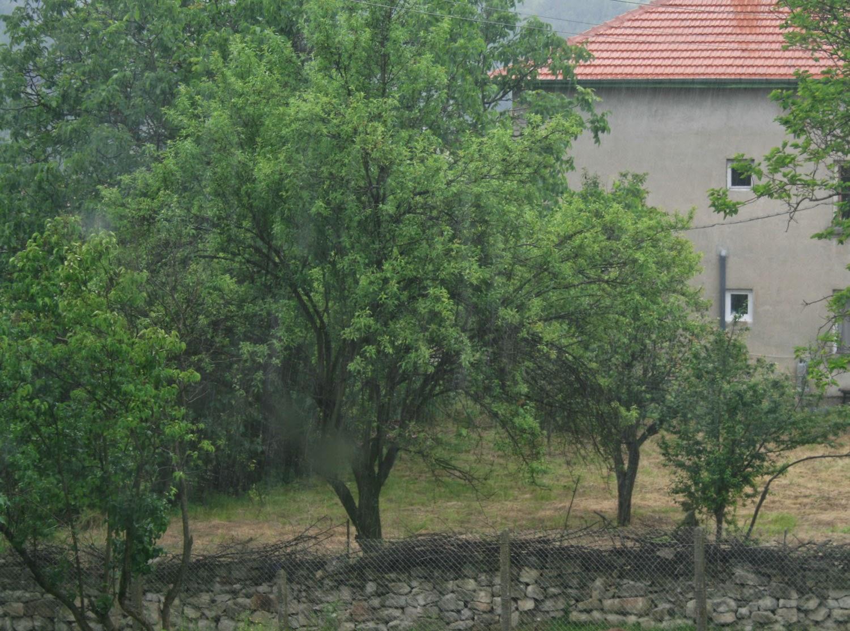 A downpour. In June. In Bulgaria.