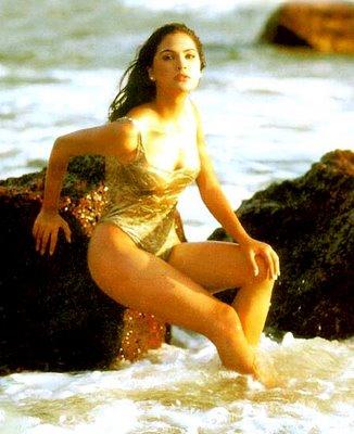 Lara dutta bikini pictures