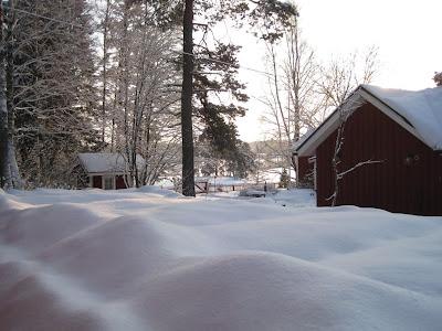 Muonamiehen mökki - kasvimaa talvella