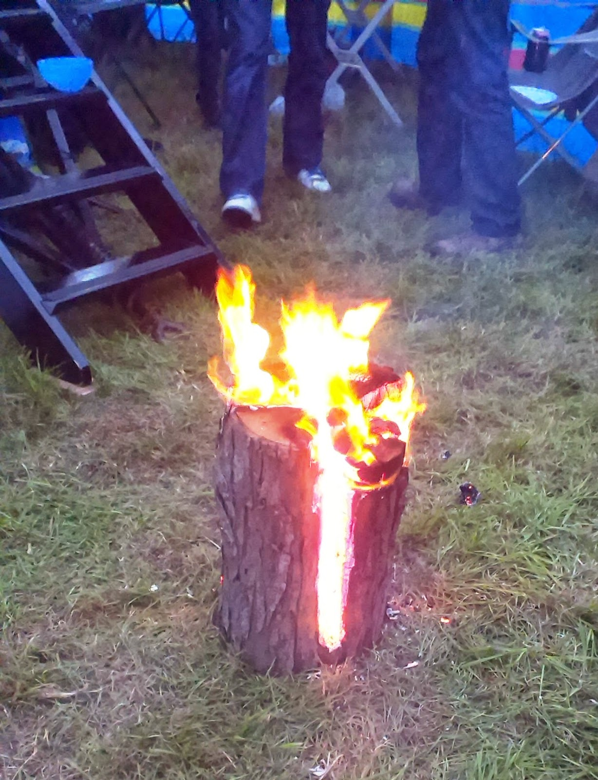 Fire in a log