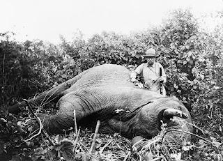 perburuan liar dapat menyebabkan hilangnya keanekaragaman hayati