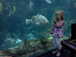 This fish kept an eye on her.