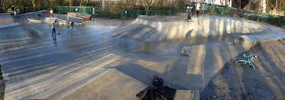 SEDJ sunbury skatepark lizard in a lab coat