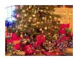 árvore de Natal com lindos presentes