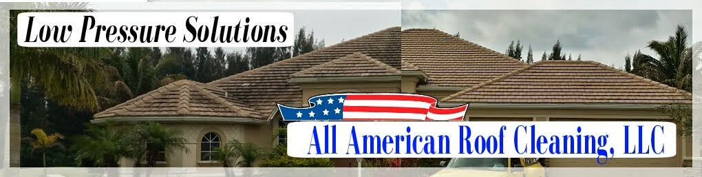 All American Roof Cleaning, LLC