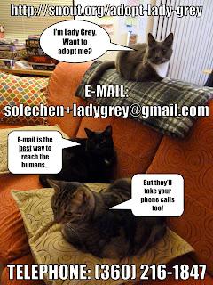 solechen+ladygrey@gmail.com