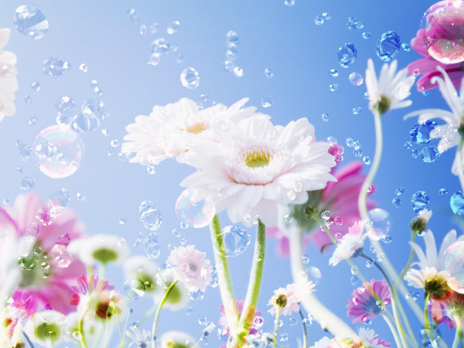Beautiful flower wallpapers early flower izmirmasajfo