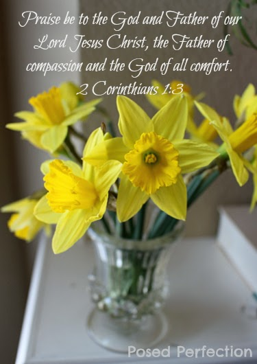 Food for the Soul ~ Daffodils ~ 2 Corinthians 1:3