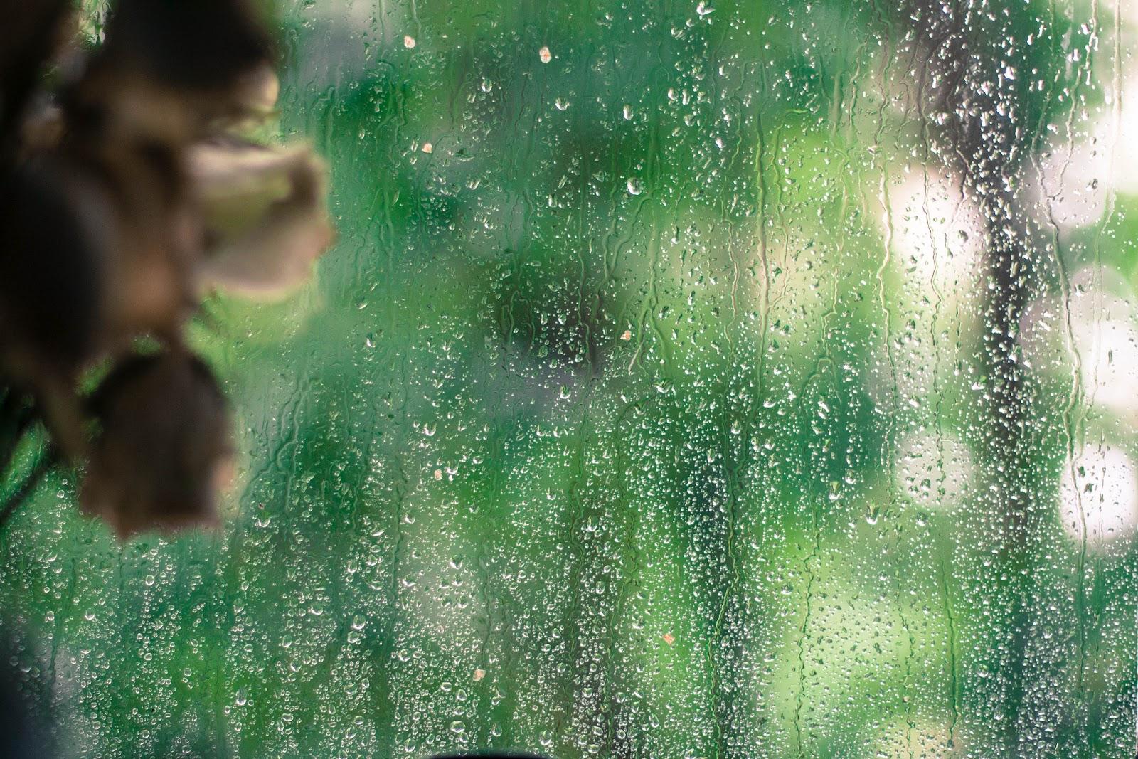 Погода в с вовчик полтавской области