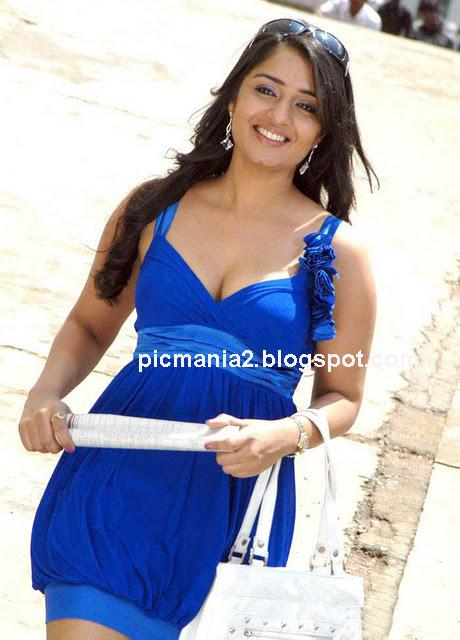 south indian actress nikita thukral show deep cleavage image gallery in bikini saree hot boobs expose