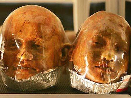 Canibalismo ? (Fotos)