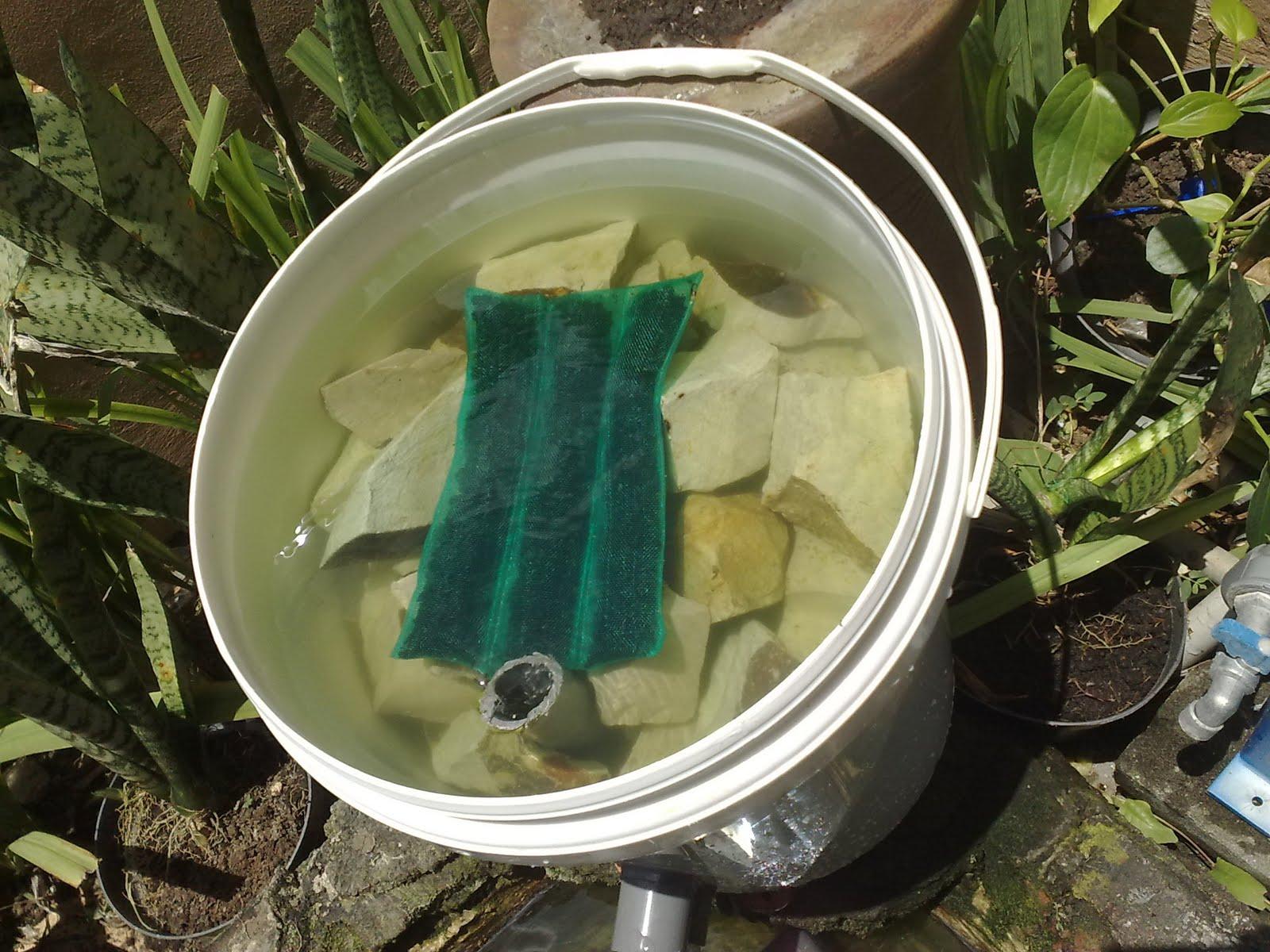 safiamita filter sederhana untuk kolam mini