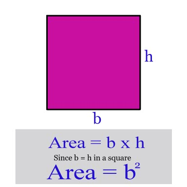 Program to Find the Area and Perimeter of Rectangle and Square [With ...