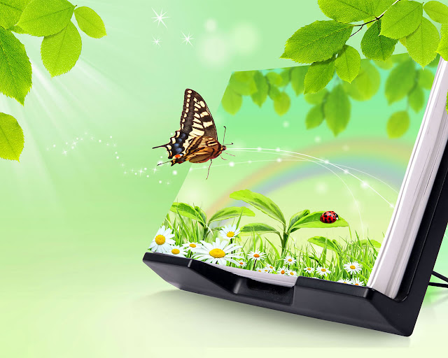 Butterfly 3D Nature Wallpaper