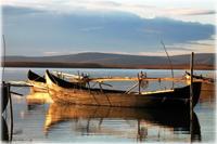 Ediția a II-a a Târgului Internațional Dunărea și Delta