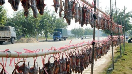 China's Cured Mouse Bacon Dish is One of the Most Popular
