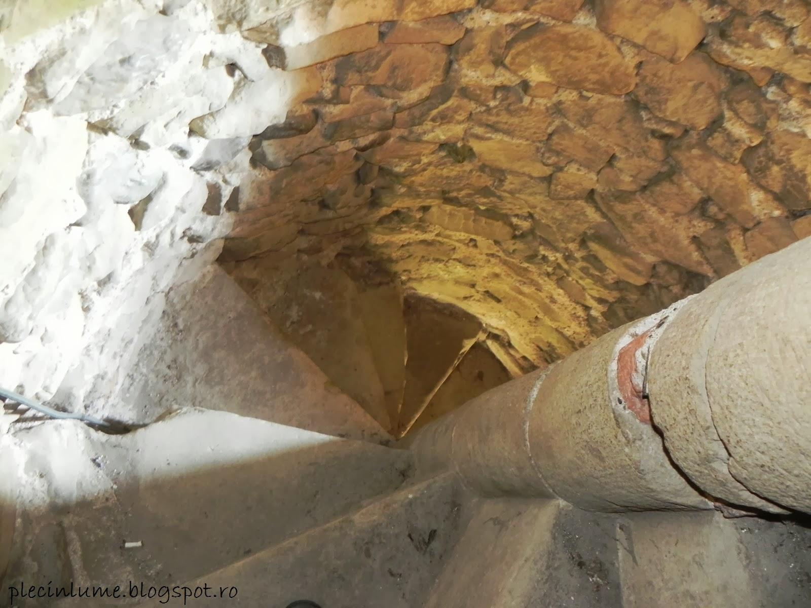 Urcarea in turnul din Carta