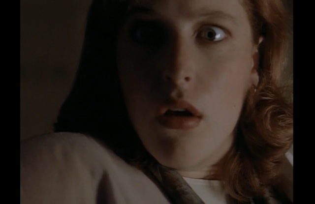 Discussion on this topic: The X-Files Is Back, And We Want , the-x-files-is-back-and-we-want/