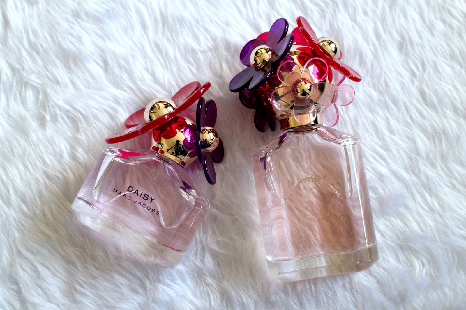 Marc Jacobs Daisy Sorbet Perfume