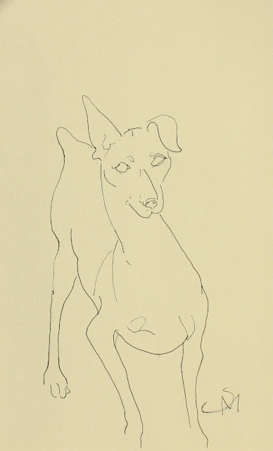 Very Small Dog, Sarah Myers, S. Myers, ink, drawing, line-drawing, sketch, study, art, paper, puppy, tiny, arte