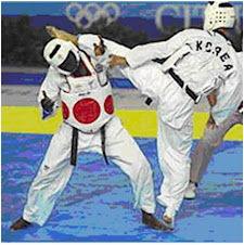BARCELONA 1992 OLYMPIC HEAVYWEIGHT TAEKWONDO FINAL BOUT