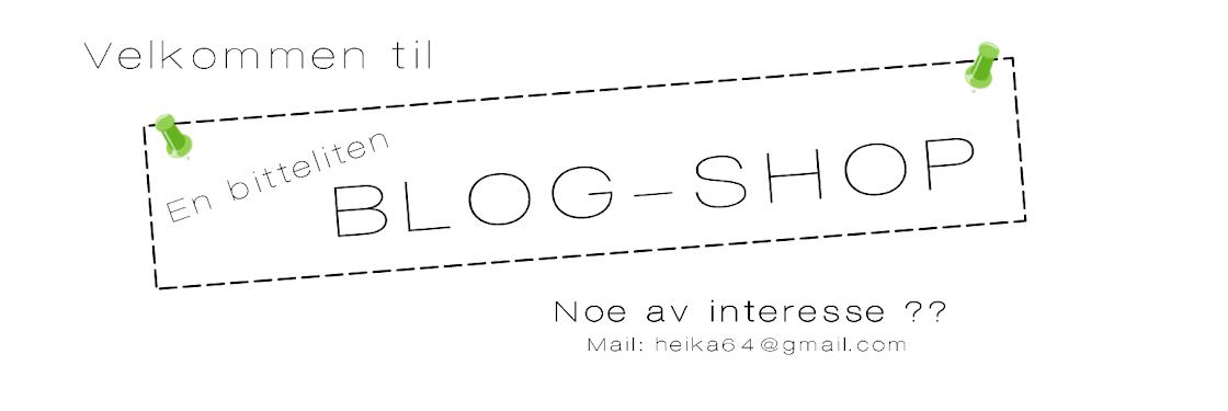 En bitteliten Blog-Shop