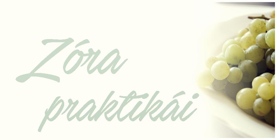 Zóra praktikái blog
