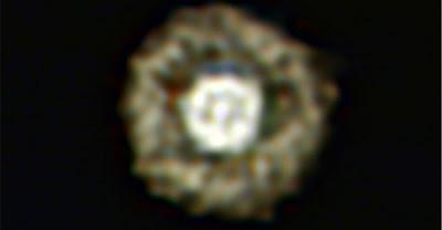 科學家發現 超亮荷包蛋恆星