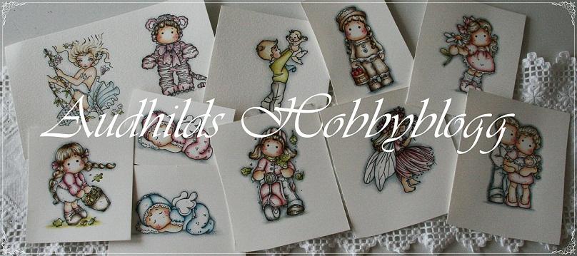 Audhilds Hobbyblogg