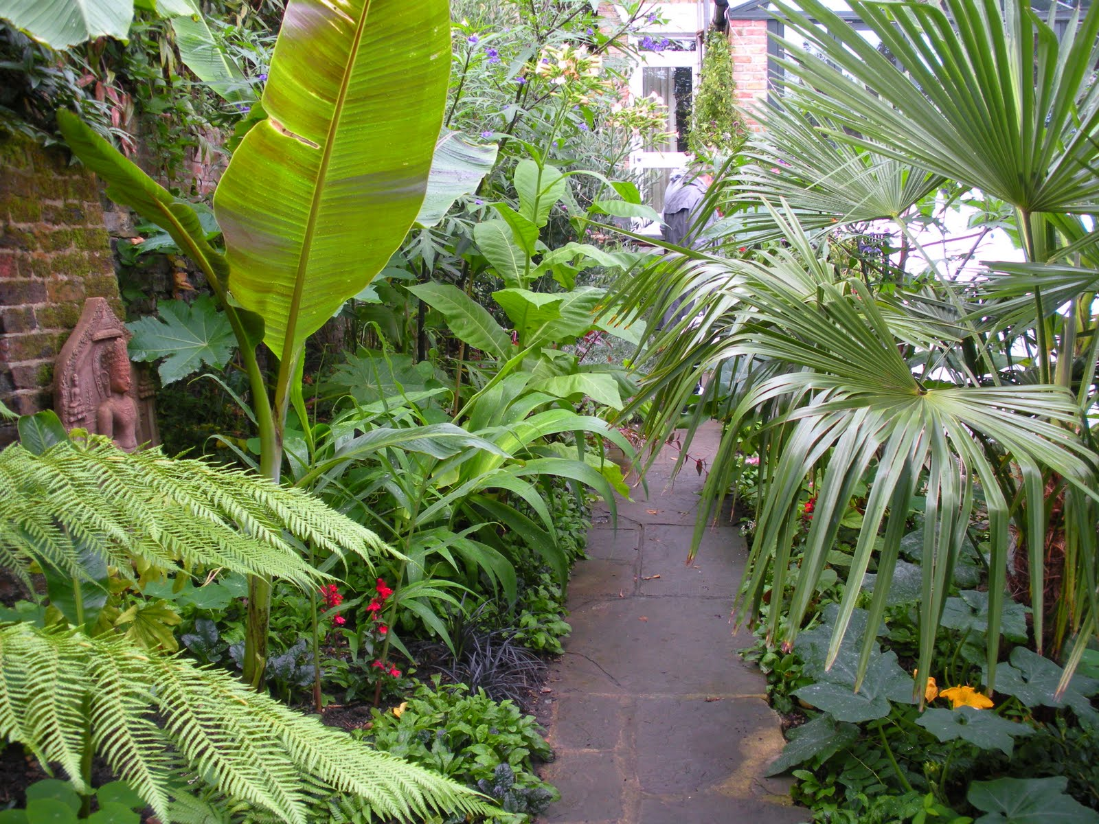 Victoria 39 s backyard going totally tropical in south london for Tropical landscape