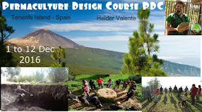 PDC Permaculture Design Course 1 to 12 December