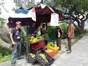 Alcaldía de Mérida fiscaliza mercados y kioscos en el municipio