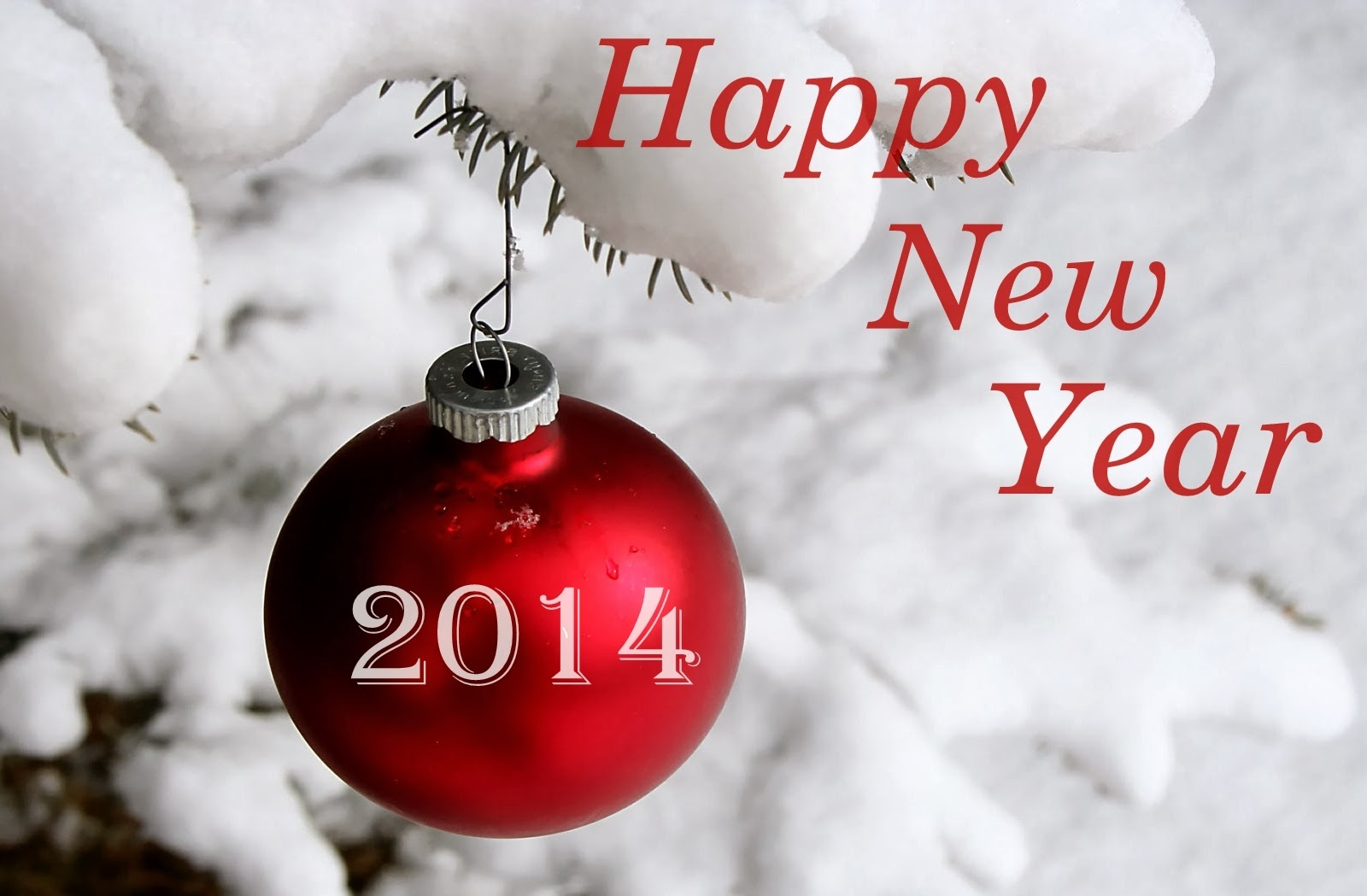 New Year 2014: Happy New Year Wishes Wallpapers, Photos - New Year ...