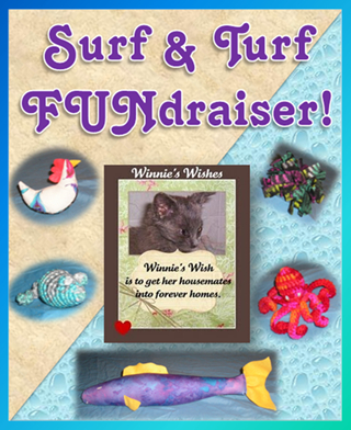 http://celestialkitties.blogspot.com/2015/06/surf-turf-fundraiser-for-winnies-wish.html