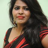 Sitara Hot Photos in Saree at Gundello Guchi Guchi Champake Movie Press Meet 22