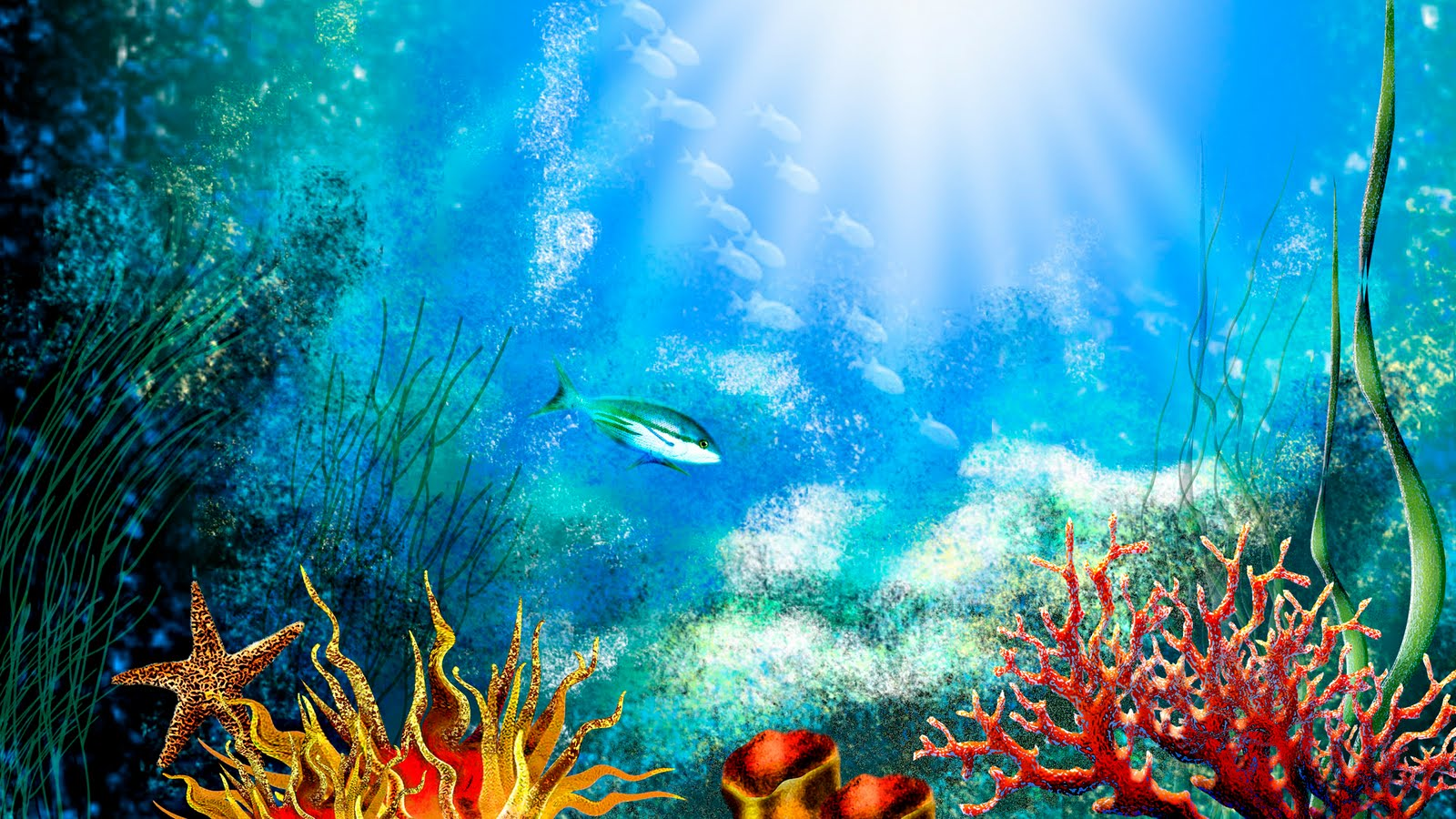 hd wallpapers: Aquarium Wallpaper