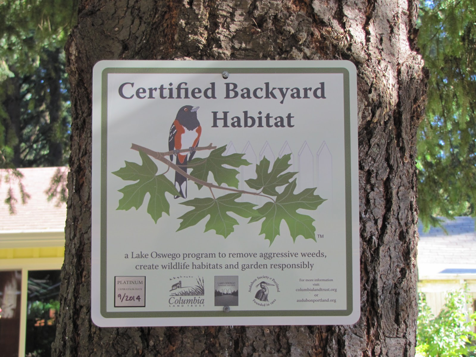 exploring tryon creek backyard habitat behind the scenes