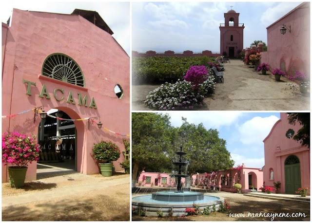 ICA-PERU-VINOS-PASEOS-TACAMA-EDIFICACION-TOUR-MAMAYNENE