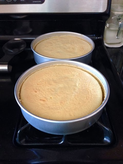 Nancy Baked Chinese Sponge Cake