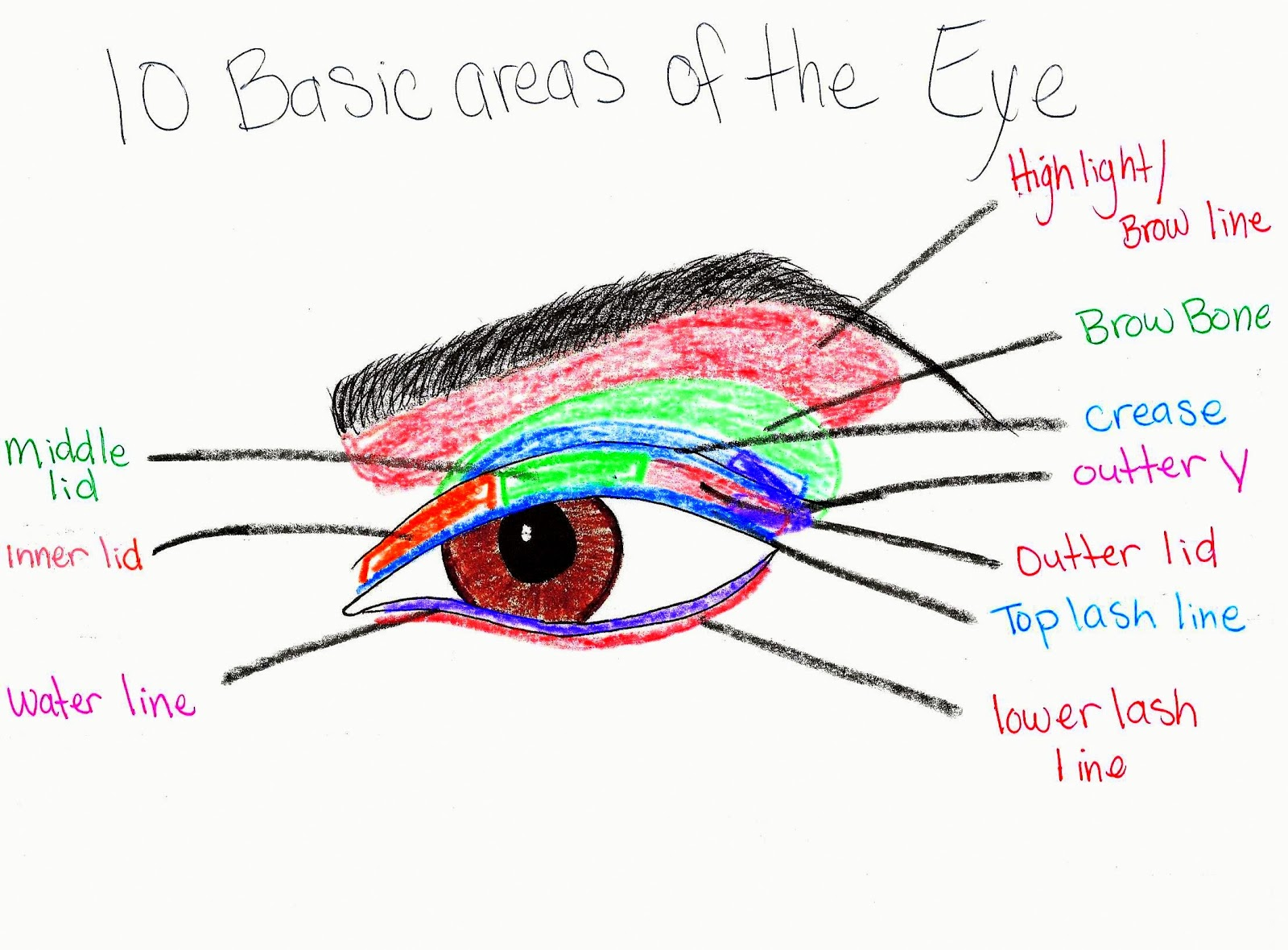 Pure makeup fun with hannah eye makeup diagrams eye makeup diagrams ccuart