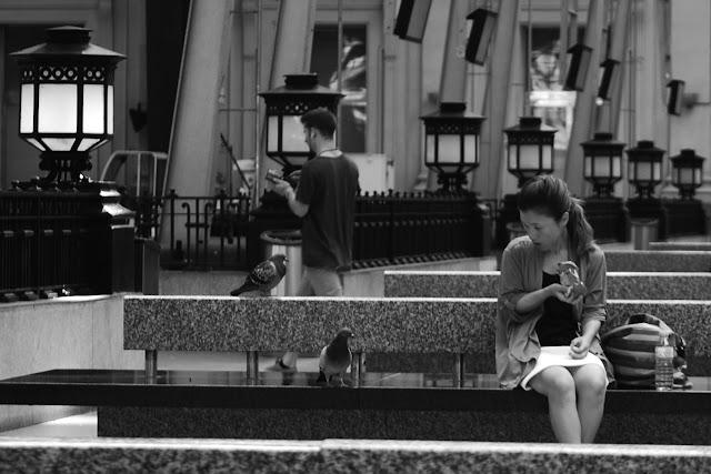 La Mujer, las Palomas y la estación de tren,