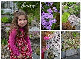 Yasmin viser botaniske hagen