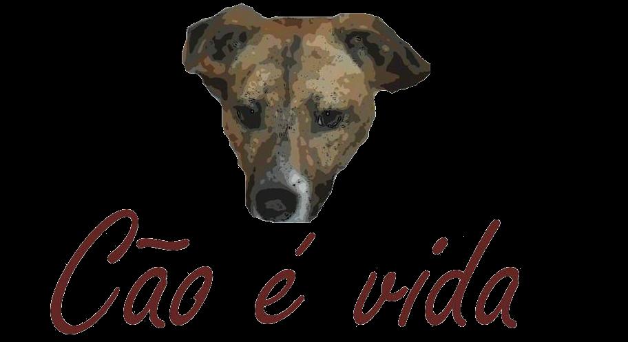 Cão é Vida
